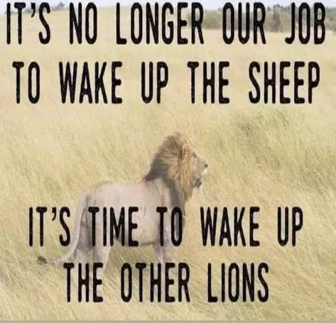Time to wake up the lions